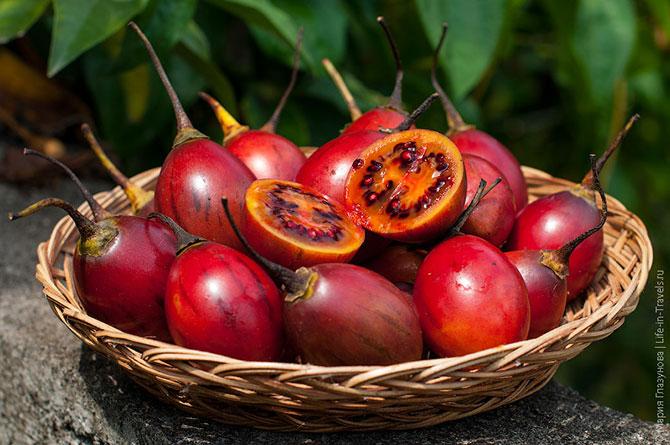 Тропические фрукты, которые нужно попробовать в Азии (25 фото)