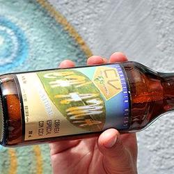 В Боливии появился совершенно новый вид пива: пиво из листьев коки