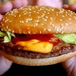 В Лондоне изобрели гамбургер из пробирки