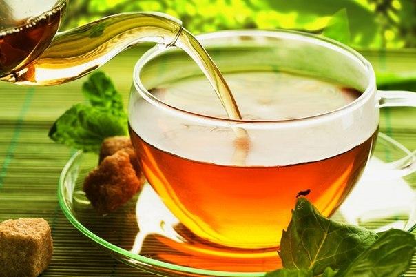Рекомендации по выбору чая