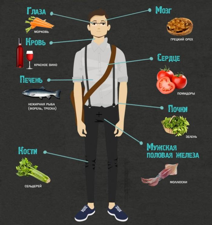 Какие продукты полезны для органов человека?