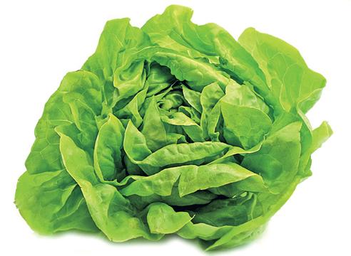 Баттерхед (маслянистый салат)