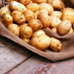 Как и сколько варить овощи? Варим картофель