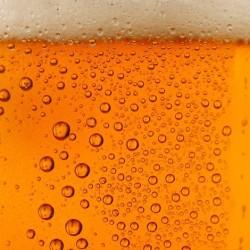 Домашняя пивоварня. Приготовление пива в домашних условиях