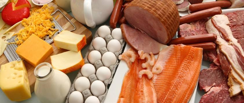 Что значит белок для здоровья человека?