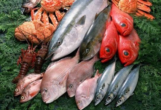 Морская рыба. Виды. Описание