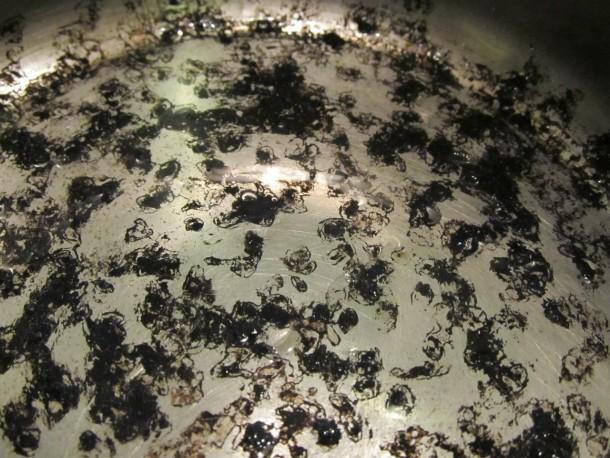 Чем почистить кастрюли из нержавеющей стали чем почистить