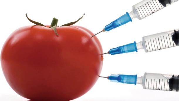 Как проверить качество продуктов