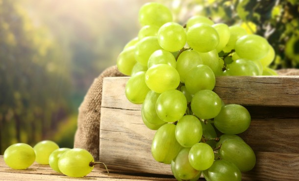Виноград - универсальное средство для похудения