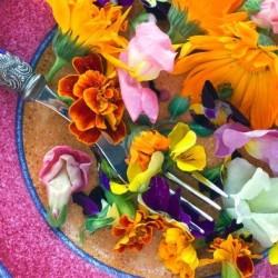 Цветы для еды