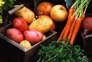 Свойства овощей в кулинарии