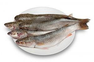 Кулинарные особенности рыбы