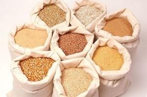 Кукурная крупа – важная составляющая любого рациона