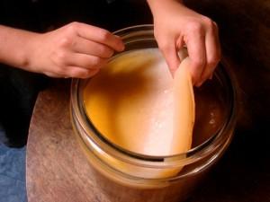 Польза напитков, приготовленных на основе чайного гриба