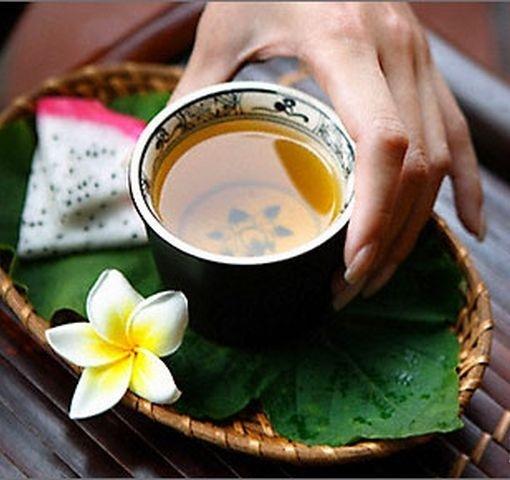 зеленый чай при планировании беременности