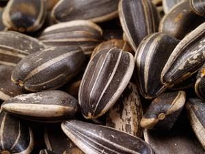 Вкусные семечки: секреты жарки